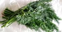 Тест свежей зелени