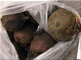 Тест свежих овощей и зелени из Республики Крым. Морковь в магазине ПУД